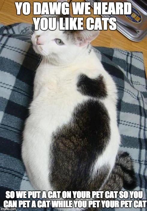 Yo I heard you liked cats, so I put a cat on your cat - DJNoNo Catrap (Aluguluga Harmony) (Meow The Jewels vs Harmony Cats vs Rapcat feat. MC King Kitty vs The Kiffness)